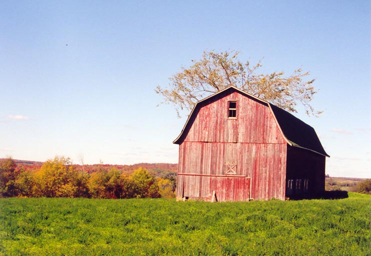 Bliss Barn
